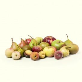 Fruta de temporada: manzanas, peras, ciruelas y mucho más. Todos de especies autóctonas recuperadas.