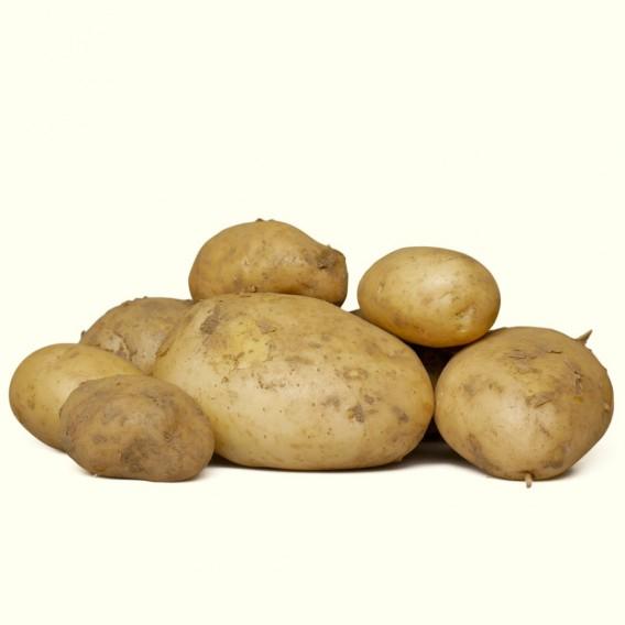 """""""Patacas novas"""" también conocidas como """"patatas nuevas"""" o """"patatas de temprano"""""""