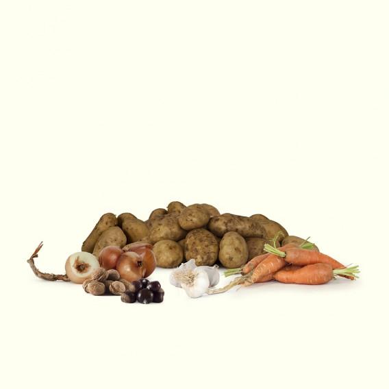 """Las mejores patatas gallegas tipo """"Kennebec"""", cebollas, ajos y zanahorias."""