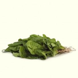 manojo de Espinacas (400 gramos aprox.)
