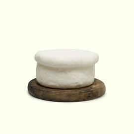 El queso de O Cebreiro elaborado por Pilar con la leche cruda de sus vacas es un exquisito queso fresco de origen medieval.