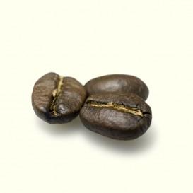 Café en grano Loma Fría (Nicaragua), donde Milo y su familia cultivan esta delicia de Arábiga 100% subvariedad Caturra.