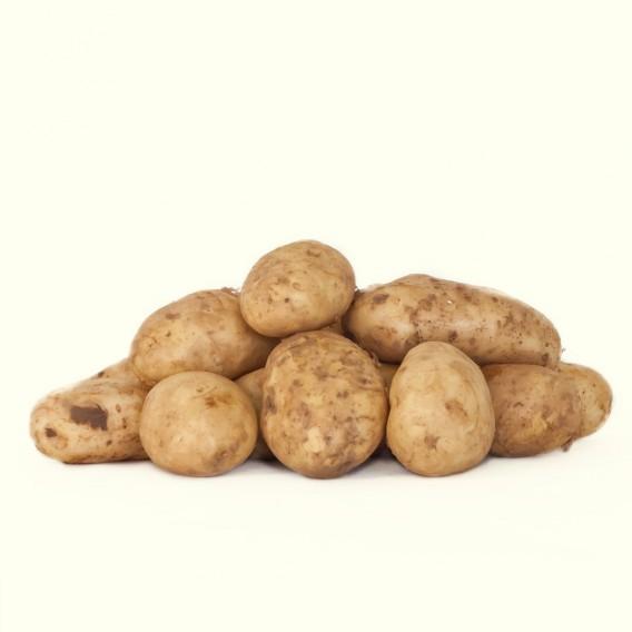 Patatas gallegas de la variedad Kennebec: ideales para asar, freir o cocer.