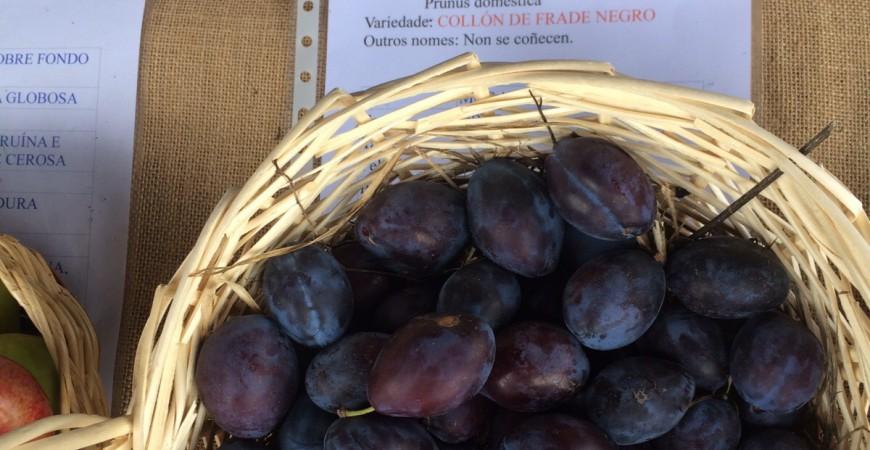 Frutas con nombres raros: del cojón de fraile a la manzana del cura